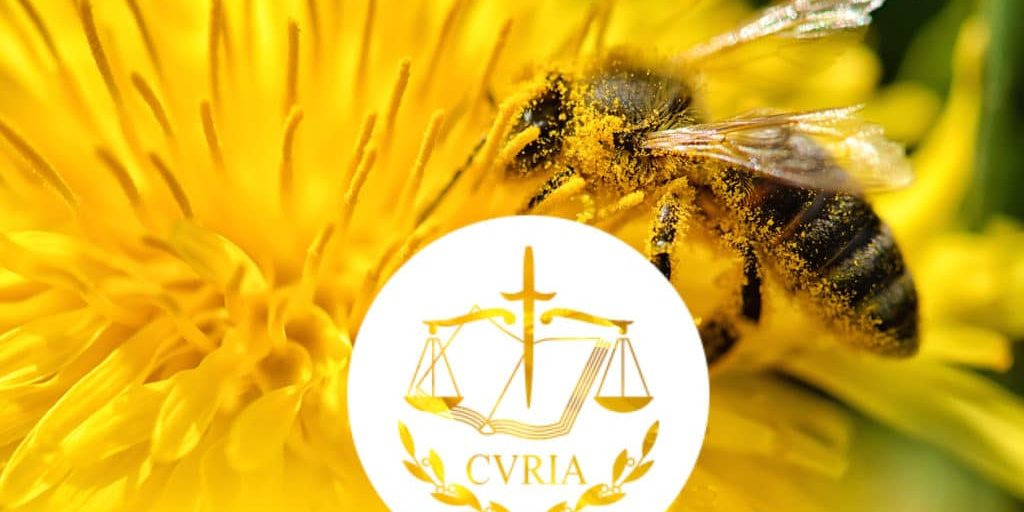 Bee flying on and over dandelion; Shutterstock ID 572729032; Purchase Order: campagne néonicotinoïdes; Client/Licensee: Génération Ecologie
